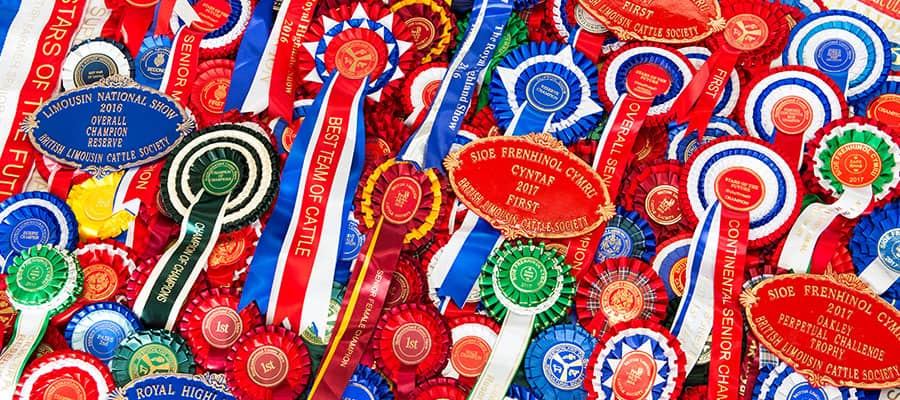 Whinfellpark winning Rosettes